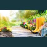 SLP 57: Einfach gemerkt - Gartensträucher schneiden wann und wie?