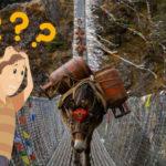 SLP62: Wie du deine Eselsbrücken nie mehr durcheinander bringst!